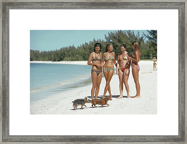 Ladies Of Lyford Cay Framed Print by Slim Aarons