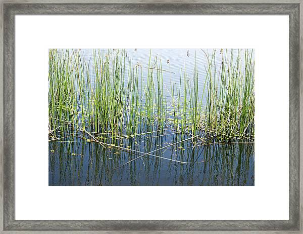 Lake Ilsanjo_533_18 Framed Print