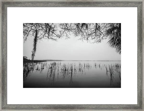 Lake Tarpon Framed Print