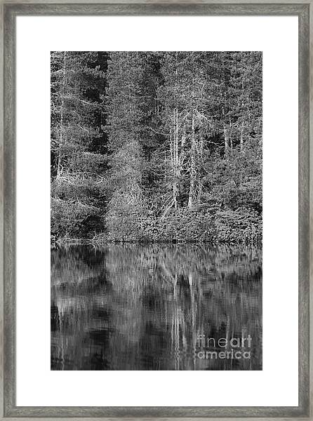 Framed Print featuring the photograph Lakeside Bliss by Jeni Gray
