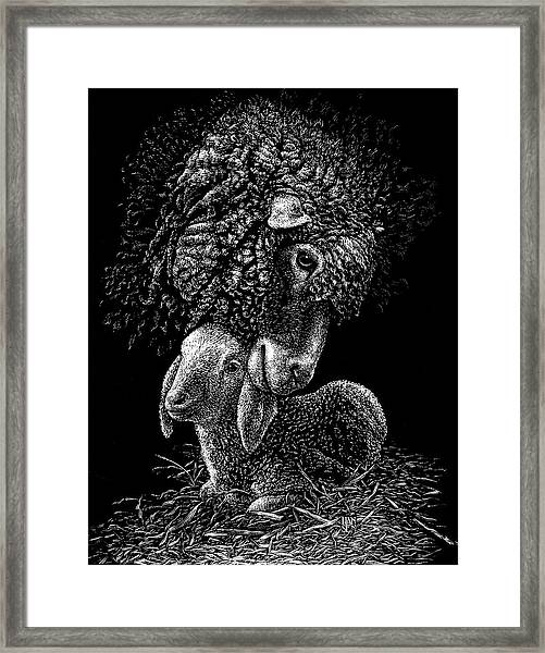 Framed Print featuring the drawing Lamb by Clint Hansen