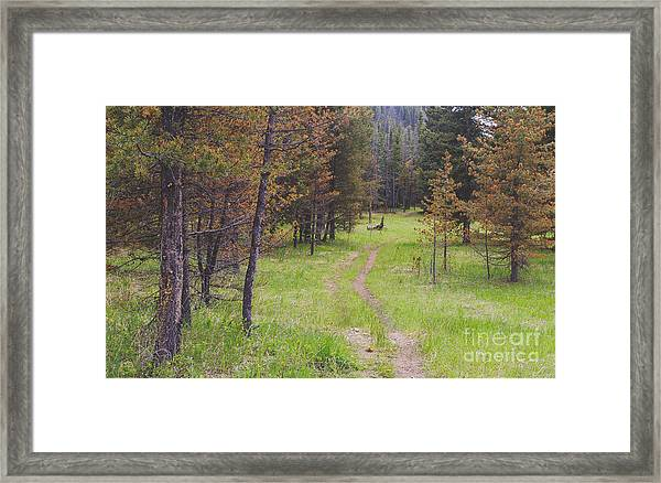 Landscape Image Of Hiking Trail In The Framed Print