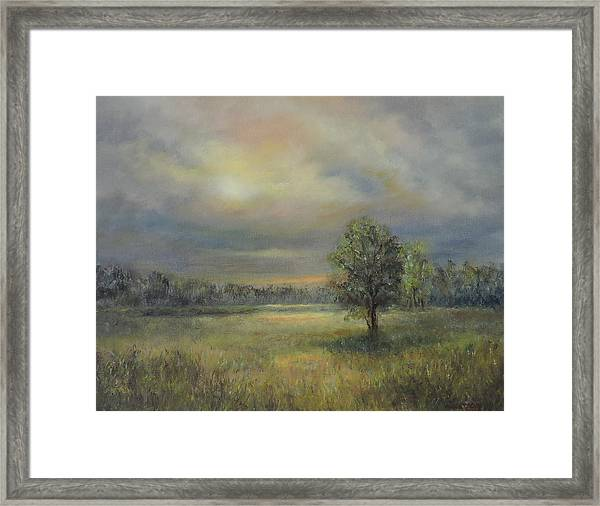 Landscape Of A Meadow With Sun And Trees Framed Print