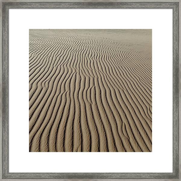 Landscape Of Sand Dunes Framed Print