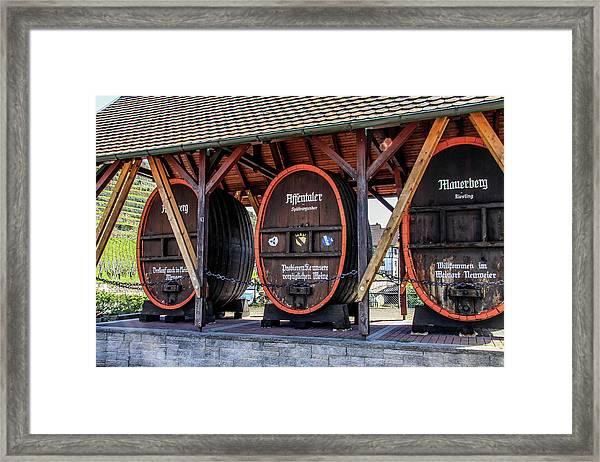 Large Wine Casks Framed Print