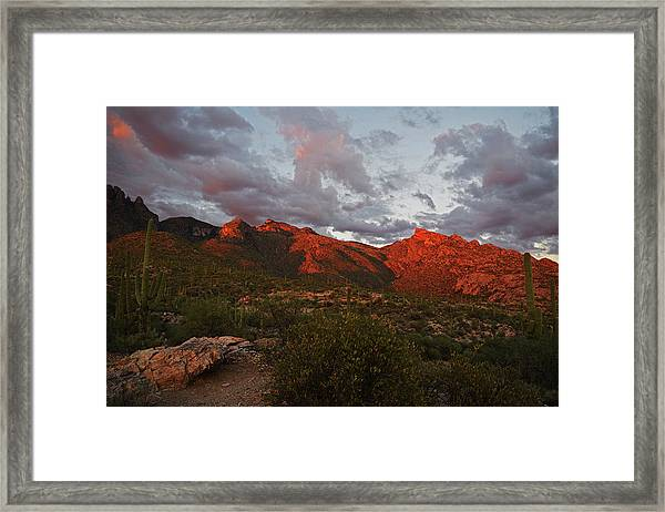 Last Light On Catalina Mountains Framed Print