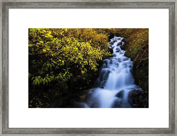 Last Shot Framed Print