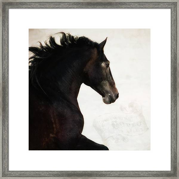 Le Cheval Framed Print