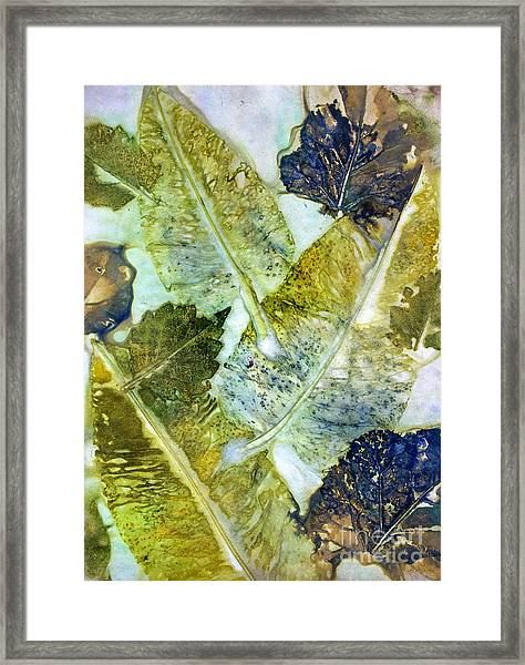 Leaves Of Nature Eco Dyed Print Framed Print