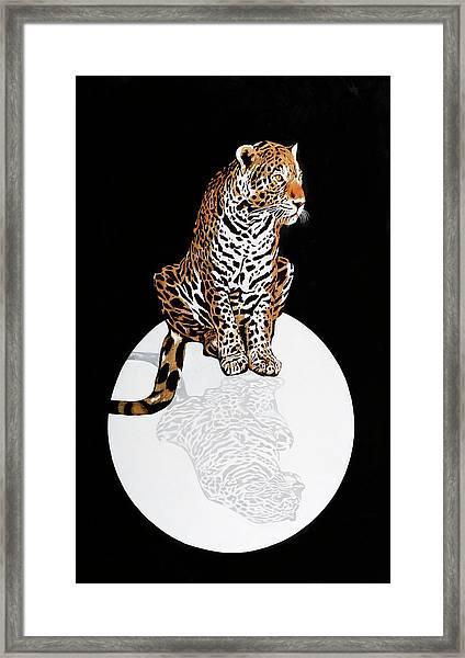 Leopardo Da Vinci Framed Print