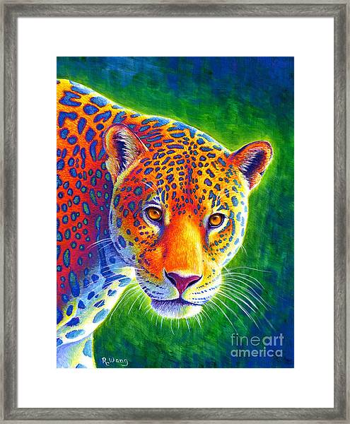 Light In The Rainforest - Jaguar Framed Print