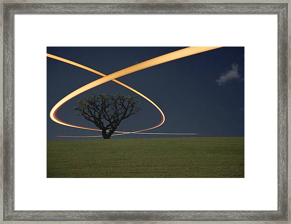 Light Trails Around Tree Framed Print