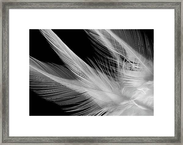 Lightness Framed Print