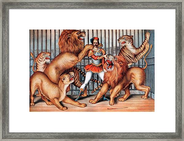 Lion Tamer, Circus Animal Framed Print