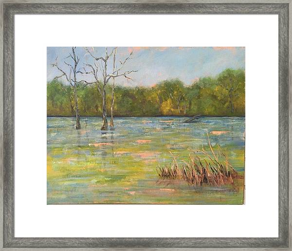 Lion's Den Marsh 3 Framed Print