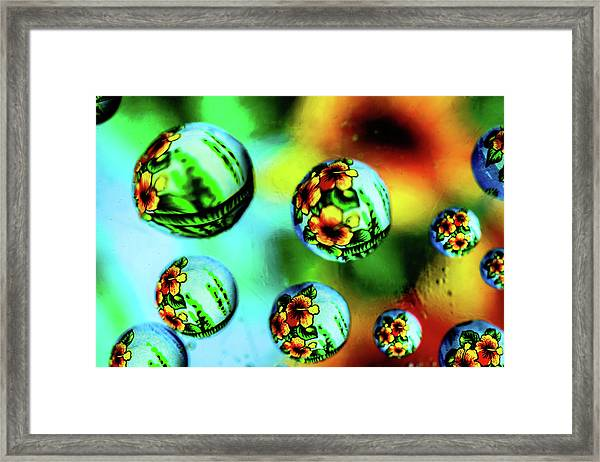 Liquid Lenses Framed Print
