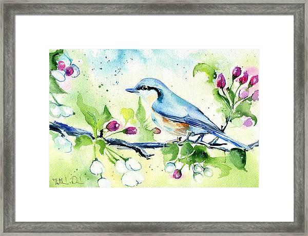 Little Blue Spring Bird Framed Print