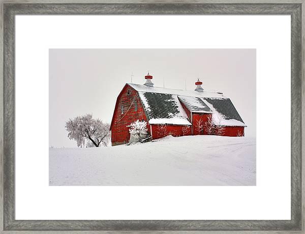 Lone Barn Framed Print