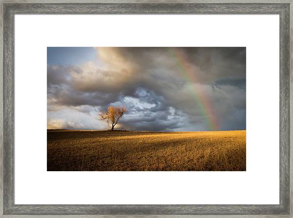 Lonely Rainbow Framed Print