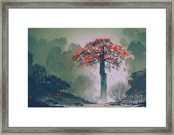 Lonely Red Autumn Tree With Falling Framed Print by Tithi Luadthong
