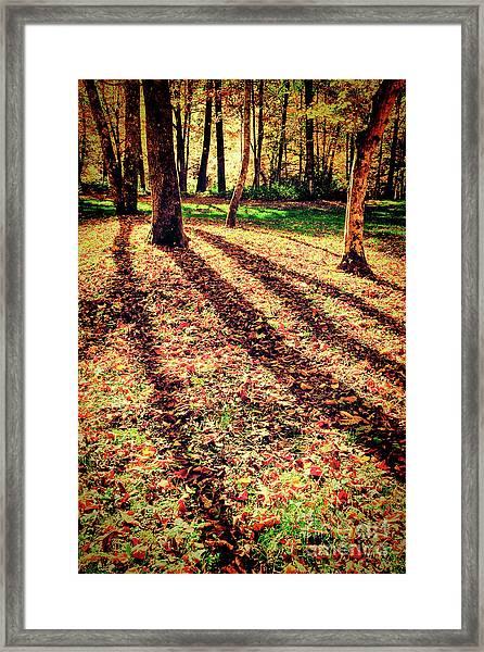 Long Autumn Shadows In The Blue Ridge Framed Print by Dan Carmichael