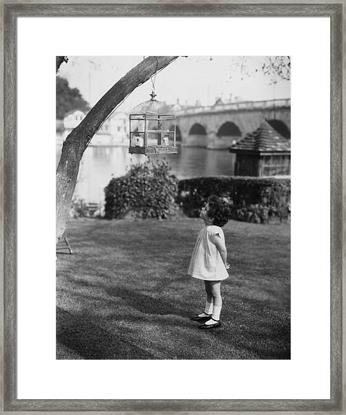 Looking At Birdcage Framed Print