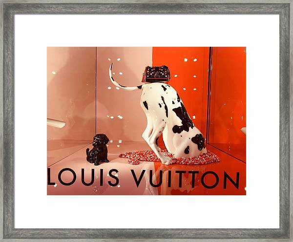 Louis Vuitton Signature Dog Framed Print