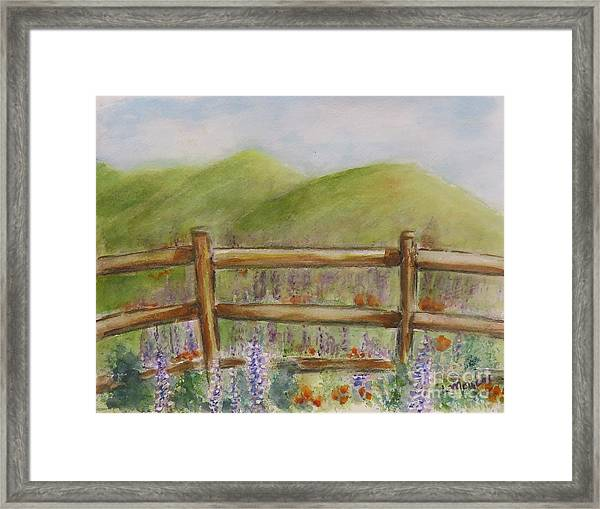 Lupines With A Side Of Poppies Framed Print