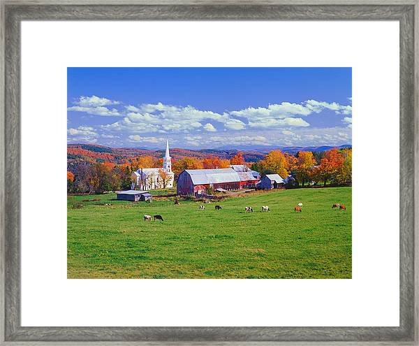 Lush Autumn Countryside In Vermont With Framed Print