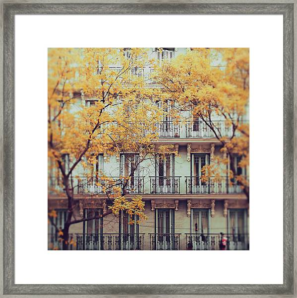 Madrid Facade In Late Autumn Framed Print by Julia Davila-lampe