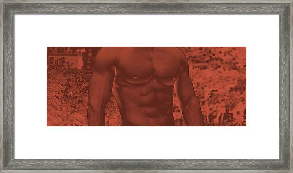 Male Torso Framed Print