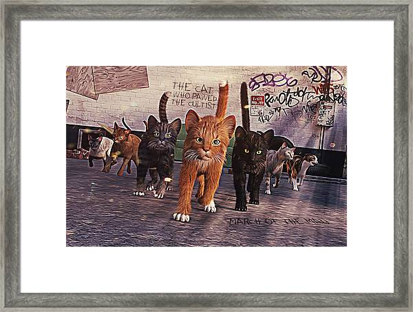 March Of The Mau Framed Print