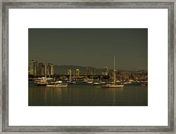 Marina Golden Hours Framed Print