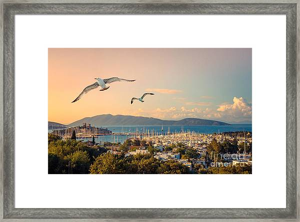 Marine Landscape With Yachts In A Framed Print