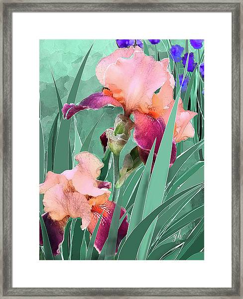 Framed Print featuring the digital art May Garden by Gina Harrison