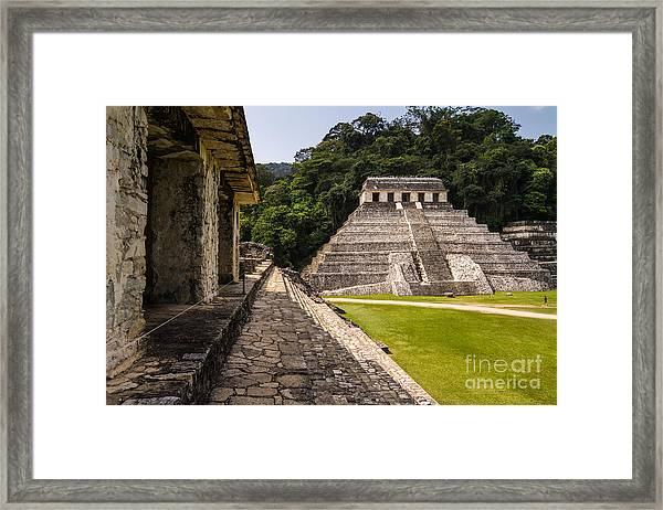 Mayan Ruins In Palenque, Chiapas Framed Print