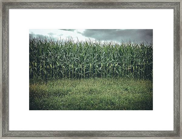 Framed Print featuring the photograph Maze Field by Steve Stanger