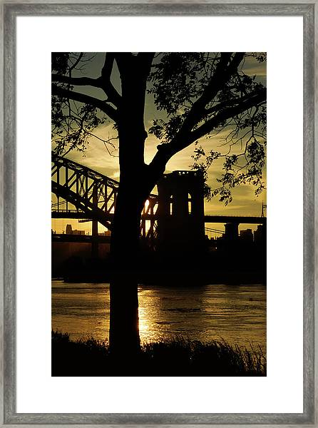 Mid Autumn Silhouette Framed Print