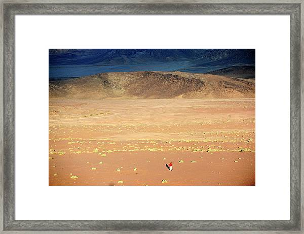 Middle East,jordan,man Walking In A Framed Print by Frédéric Soreau