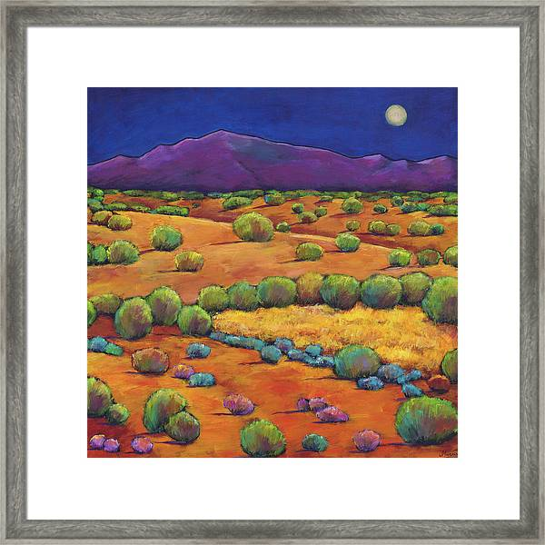 Midnight Sagebrush Framed Print