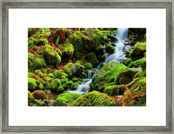 Framed Print featuring the photograph Mini Cascading Waters by Dee Browning