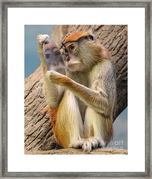 Mirror Selfie Framed Print