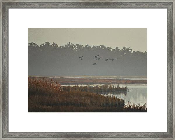 Misty Marsh Framed Print