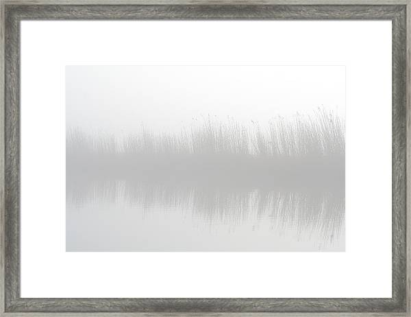 Misty Morning At The Riverside Framed Print