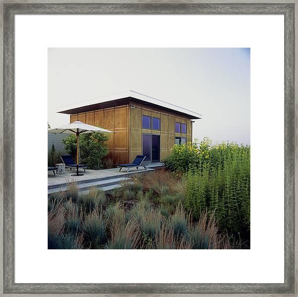 Modern House Behind Ornamental Grasses Framed Print