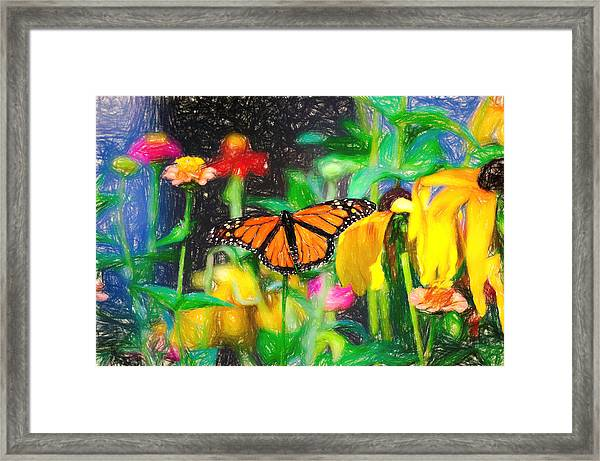 Monarch Butterfly Colored Pencil Framed Print