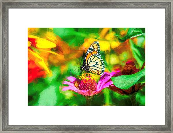 Monarch Butterfly Impasto Colorful Framed Print