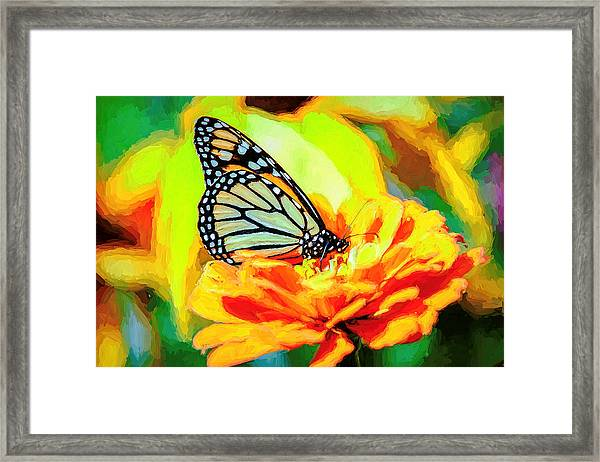 Monarch Butterfly Van Gogh Style Framed Print