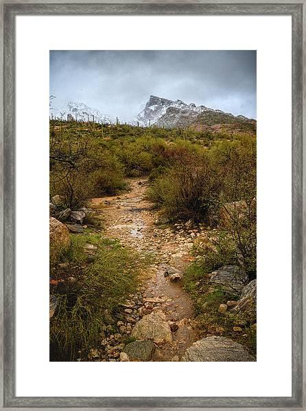 Moody Creekbed  Framed Print