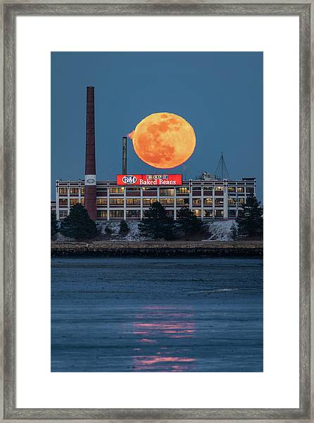 Moon Beans Framed Print